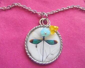 Pretty Aqua Dragonfly With Glass Chez Flowers  Pendant