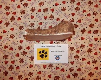 """Organic Large Elk Antler Dog Chew Split """"Made in Montana"""" (Lot C28)"""