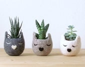 Free shipping - Cat head planter / Personalized planter / Felt succulent planter  / cat lover gift / Unique gift - Set of three