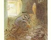 Beatrix Potter - MR.TOD Book Plate 86