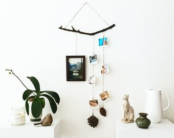Driftwood photo frame wall hanging | polaroid pegs display set wood pinecone forest rustic wanderlust wall art home decor decoration gift
