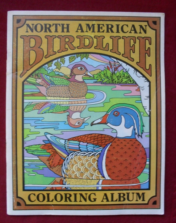 Vintage North American Bird Life Coloring Book Album 1972