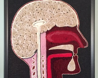 "Bisected Human Head–A Study in Wool (20"" square)"