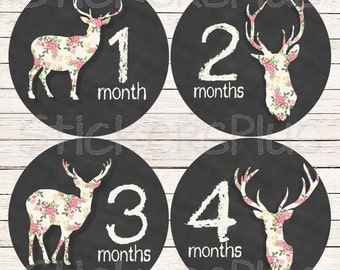Baby Girl Month Stickers Monthly Baby Stickers, Milestone Baby Month Stickers, Monthly Bodysuit Deer Antler Floral Rose Chalkboard Chalk