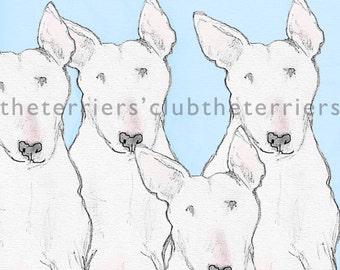 Four Bull Terriers Blank Card