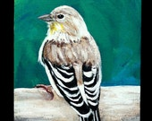 "Female Goldfinch original acrylic painting on 5"" x 7"" canvas board, small art, animal painting, bird painting, unframed art, wall decor"