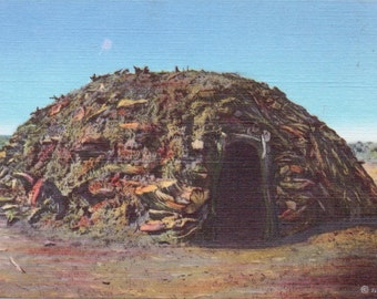 Navajo Hogan - Linen Postcard - Unused - Native American Postcard (M)