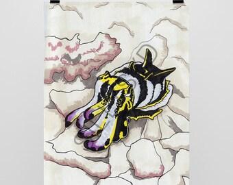 Flamboyant Cuttle Fish 5x7 Print