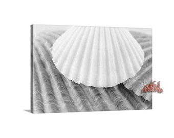 Black and White, Seashell Print, Canvas Art, Ready to Hang, Bathroom Decor, Wall Art, Sea Shells Art, Wall Decor, Bath Decor, For Home