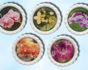 Orchid flowers, pink orchid,  bottle cap magnets