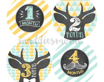 Monthly Baby Stickers Baby Boy Month Sticker Baby Month Stickers Monthly Sticker Chalk Board Arrows Mustache Antler (Weston Deer Chalkboard)