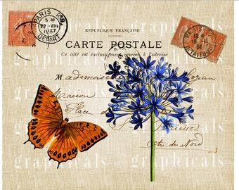 Paris decor instant clip art Orange butterfly Blue flower Digital download image for Iron on fabric transfer burlap decoupage pillow No 1725