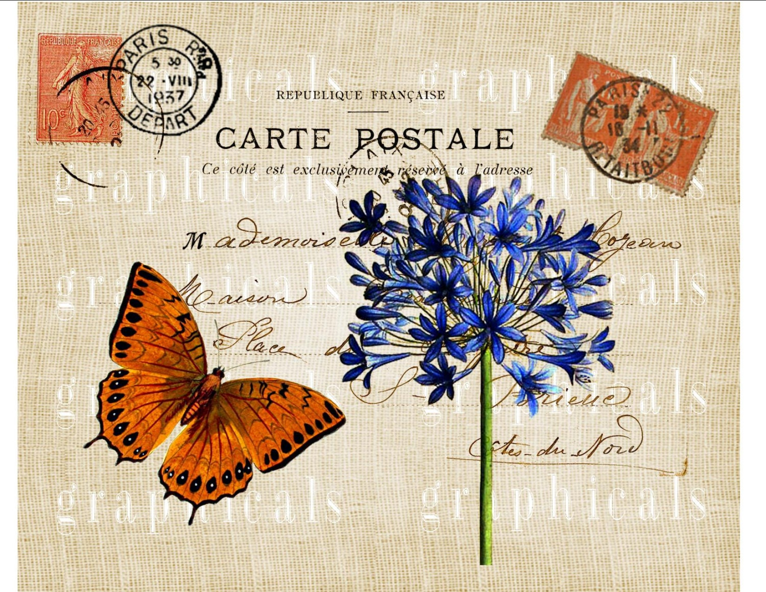 paris decor instant clip art orange butterfly blue flower. Black Bedroom Furniture Sets. Home Design Ideas