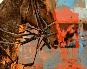 Horses are Therapy | Equine Fine Art | At Checkout, Choose Lustre Print or Gallery Wrapped Canvas