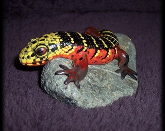 Diploglossus monotropis, hand sculpted reptile on a rock