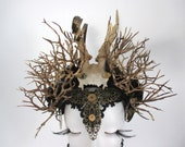 "Steampunk skull antlers Headpiece ""Timeless"" headdress Gothic romanticism  Fairy Hat"