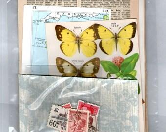 Botanical Vintage Paper Scrap Pack pages pieces Scrapbook Paper DIY Wedding Decorations 4