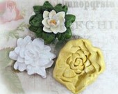 Water lily mold, Flower mold,Christmas molds, Silicone mold,push mold, food supplies mold, clay supplies molds, # 26 s