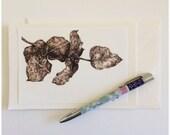 Australian Eucalypt Leaf, Fine Art Luxury Greeting Card,  Blank Card, Kylie Fogarty Art