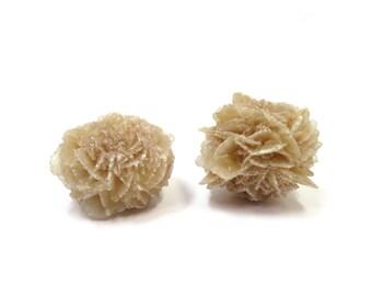 "Desert Rose Raw Crystal 2 Selenite Rose Specimens 26mm - 32mm / 1"" x 1.25"" Natural Rough Stones (Lot DR01) Natural Mineral"