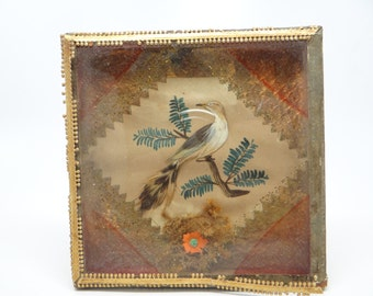 1800's French Mourning Memorial Collage Shadow Box, Hand Painted Bird, Antique