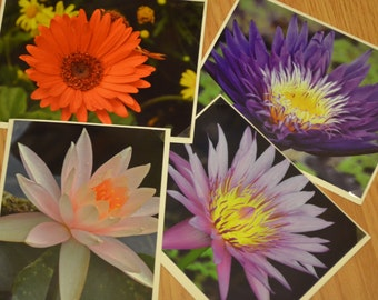 Floral Notecard collection of 4