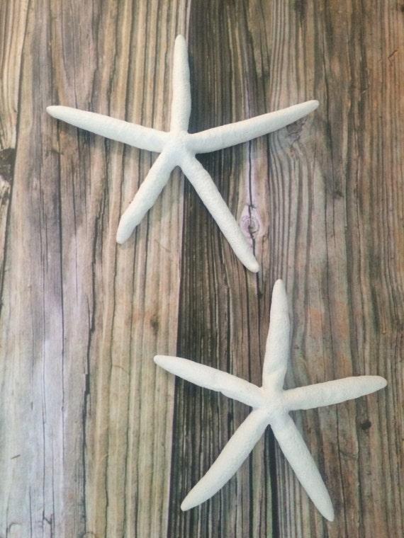 Large Starfish Wall Decor : Starfish wall decor hangings large