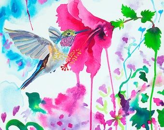 Hummingbird with Hibiscus Watercolor Painting, Blue Bird Pink Flowers Fine Art Print