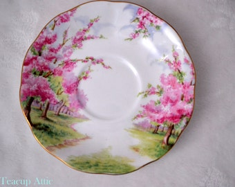 Royal Albert Blossom Time Saucer Only, English Bone China Saucer, Replacement China, ca. 1940-