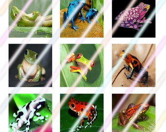 Frogs (#2) 1 inch Square Tile Images 4x6 Digital Collage Sheet Instant Download