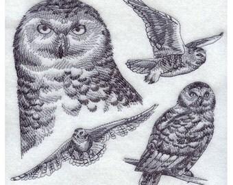 Custom Embroidered Snowy Owl Sweatshirt S-3XL