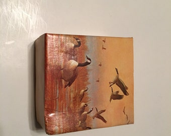 avon canada goose decanter in original box wild country after shave