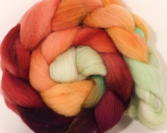Hand dyed top for spinning - Icelandic Poppies - (4.8 oz.) Cheviot