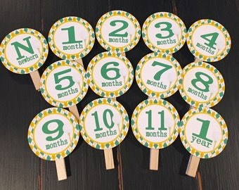 PREPPY ARGYLE GOLF 1st Birthday Photo Clips Banner Newborn - 12 months Yellow Green - Party Packs Available