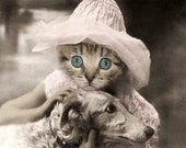 Sylvia, Vintage Cat Print, Anthropomorphic, Cute Cat Photo, Altered Photograph, Photo Collage, Kitten Photo, Cat Art, Nursery Decor