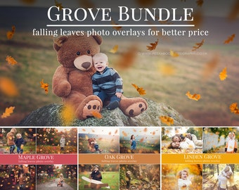 Grove Bundle for Photographers, Fall photo overlays, falling leaves photo overlays, autumn photo overlays for Photoshop
