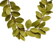 Artificial Magnolia Garland in Light Green ideal for Creating Wedding Floral Garlands, Event Decor or Home Decorations