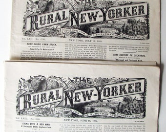 Upstate NY Farming! Rural New-Yorker, 2 Full Issues, 1903 and 1904, Great 100+ Year Old Newspaper, Articles & Advertising