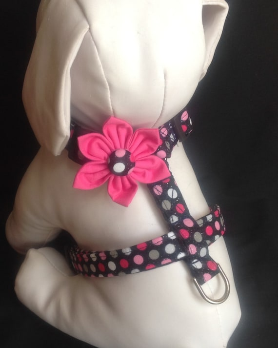 Dog Harness Black & Pink Sparkly Polka Dots  - size XS, S, M