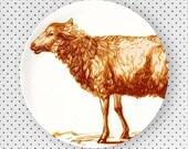 Sheep in exuberance orange melamine plate