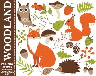 50% OFF SALE Digital Woodland Clipart - Fox, Squirrel, Owl, Hedgehog, Mushrooms, Acorn, Woodland Clip Art