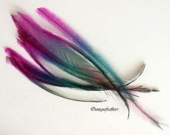 Cruelty Free Feather Fashion Hair Accessory Hat Making Feather Rainbow Colorful Pink Blue Emu Feather for Crafting Decorative Plume, 12 PC