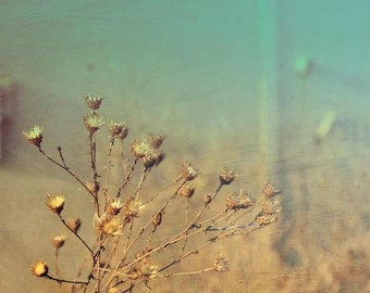 Dreamy photography mint tourquise Shabby meadow fine art photography print collage 8X10 landscape limited edition wall home decor art