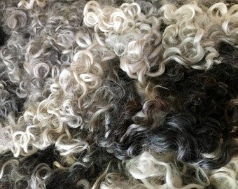 Wensleydale, Fleece, Washed, Undyed, Mixed, 2 Ounces, Natural, Fiber, Wool, Spin, Felt, Mixed Color Curls