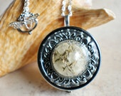 Music box locket,  round locket with music box inside, in silver with dandelion wishes encased in glass