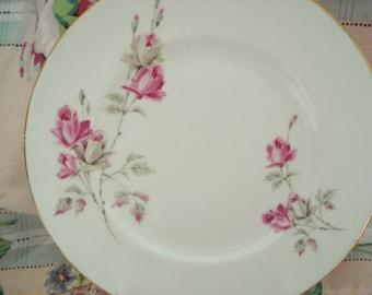 Vintage Luncheon Plates Royal Victoria Salad Plates Pink Rose English Bone China Set of 2 Shabby Chic Vintage Wedding
