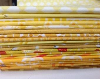 Daffodils Fat Quarter Bundle (YEL20FQB01)