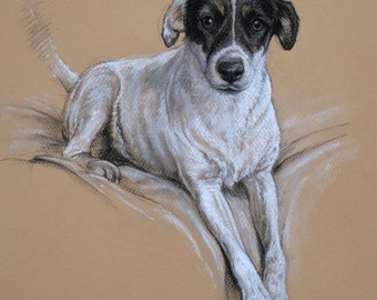 Jack Russell Terrier dog art LE fine art print 'Smiler II' from an original soft pastel and charcoal H Irvine