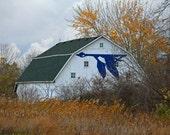 Ottawa National Wildlife Refuge I (FREE SHIPPING in the U.S.only)