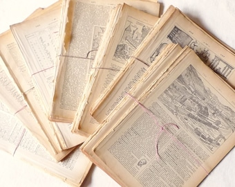 50 Dictionary Pages, 1920s Vintage French Paper Bundle,  French Book Pages, Paper Ephemera, Scrapbooking, DIY Crafts, Art Supply, Paper Pack